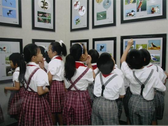 """少年宫举行""""红树林""""生态摄影展及科普讲座"""